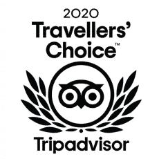 thumbnail_2020-Travellers-Choice-logo-FR